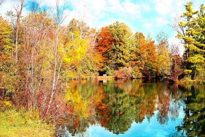 Autumn Lake Download Jigsaw Puzzle