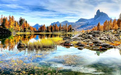 Mountain Lake Download Jigsaw Puzzle