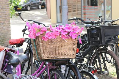Bicycle With Flowers Download Jigsaw Puzzle