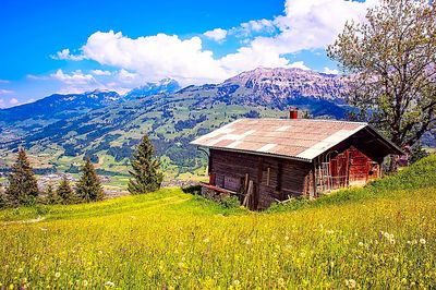 Mountain Cabin Download Jigsaw Puzzle