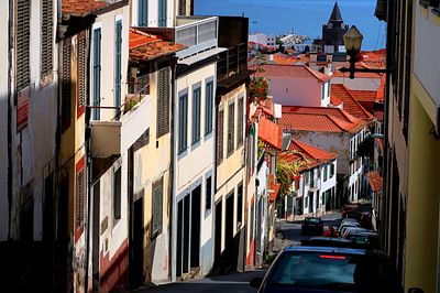 Street, Madeira Download Jigsaw Puzzle