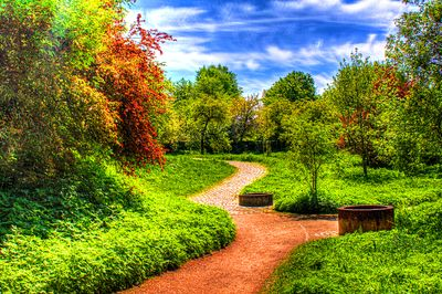 Park Path Download Jigsaw Puzzle